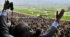 cheltenham_crowd