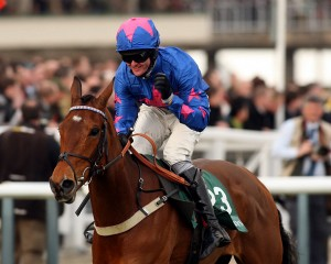 17 March 2010; CUE CARD, Joe Tizzard up, winning The Weatherbys Champion Bumper at Cheltenham. © Peter Moone, 6, Cumberland Street, Dun Laoghaire, Co. Dublin, Ireland. Tel: 00 353 (0)86 2589298